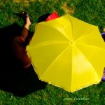 How They Work - Offshore Umbrella Companies